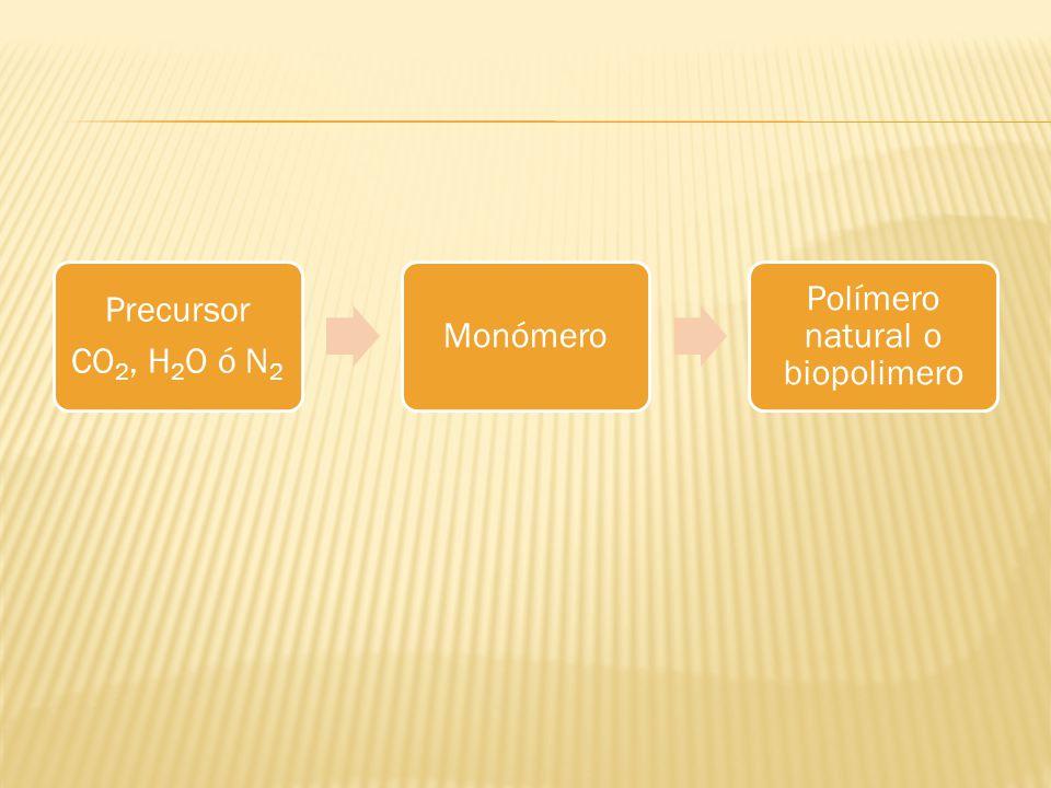 Precursor CO2, H2O ó N 2 Monómero Polímero natural o biopolimero
