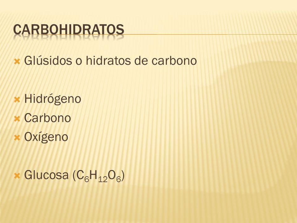  Glúsidos o hidratos de carbono  Hidrógeno  Carbono  Oxígeno  Glucosa (C 6 H 12 O 6 )