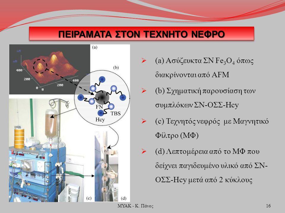 ΠΕΙΡΑΜΑΤΑ ΣΤΟΝ ΤΕΧΝΗΤΟ ΝΕΦΡΟ  (a) Ασύζευκτα ΣΝ Fe 3 O 4 όπως διακρίνονται από AFM  (b) Σχηματική παρουσίαση των συμπλόκων ΣΝ-ΟΣΣ-Hcy  (c) Τεχνητός νεφρός με Μαγνητικό Φίλτρο (ΜΦ)  (d) Λεπτομέρεια από το ΜΦ που δείχνει παγιδευμένο υλικό από ΣΝ- ΟΣΣ-Hcy μετά από 2 κύκλους 16ΜΥΑΚ - Κ.