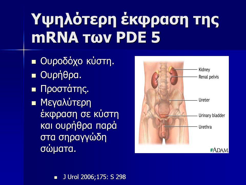 Υψηλότερη έκφραση της mRNA των PDE 5 Ουροδόχο κύστη. Ουροδόχο κύστη. Ουρήθρα. Ουρήθρα. Προστάτης. Προστάτης. Μεγαλύτερη έκφραση σε κύστη και ουρήθρα π