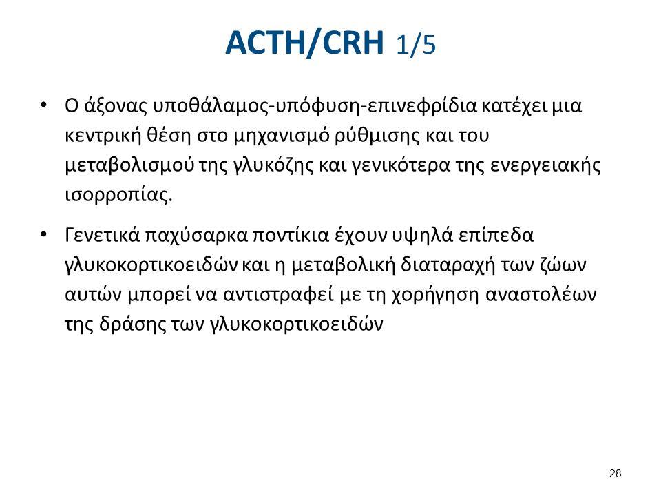 ACTH/CRH 1/5 Ο άξονας υποθάλαμος-υπόφυση-επινεφρίδια κατέχει μια κεντρική θέση στο μηχανισμό ρύθμισης και του μεταβολισμού της γλυκόζης και γενικότερα