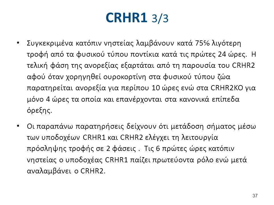 CRHR1 3/3 Συγκεκριμένα κατόπιν νηστείας λαμβάνουν κατά 75℅ λιγότερη τροφή από τα φυσικού τύπου ποντίκια κατά τις πρώτες 24 ώρες. Η τελική φάση της ανο