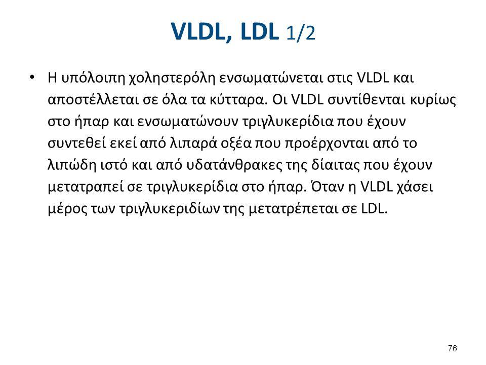 VLDL, LDL 1/2 Η υπόλοιπη χοληστερόλη ενσωματώνεται στις VLDL και αποστέλλεται σε όλα τα κύτταρα. Οι VLDL συντίθενται κυρίως στο ήπαρ και ενσωματώνουν