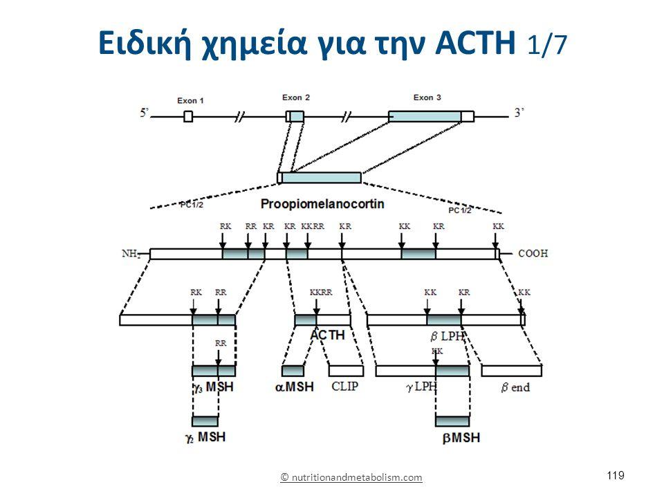 Ειδική χημεία για την ACΤH 1/7 119 © nutritionandmetabolism.com