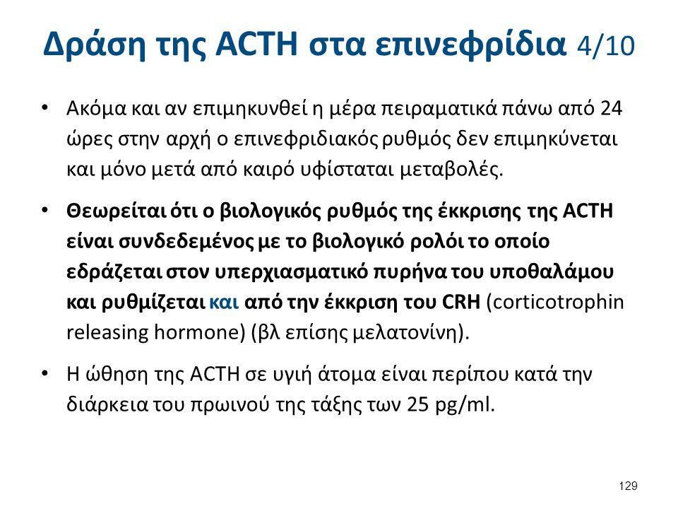 Δράση της ACTH στα επινεφρίδια 4/10 Ακόμα και αν επιμηκυνθεί η μέρα πειραματικά πάνω από 24 ώρες στην αρχή ο επινεφριδιακός ρυθμός δεν επιμηκύνεται κα