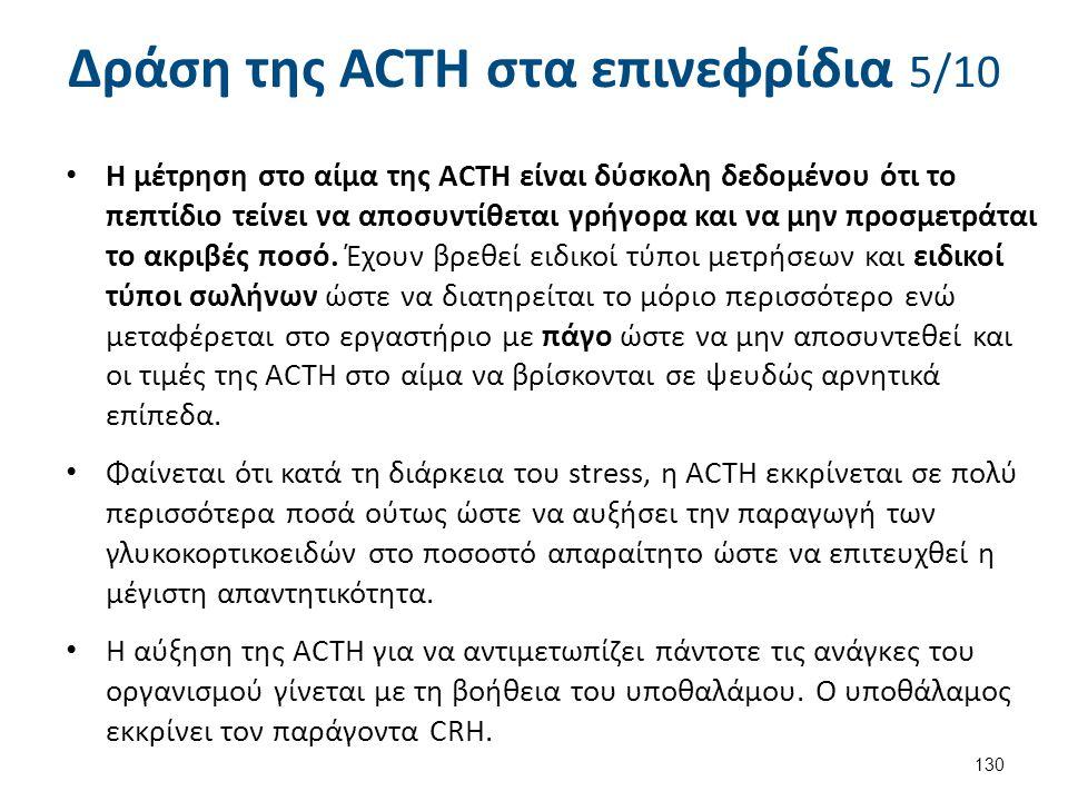 Δράση της ACTH στα επινεφρίδια 5/10 Η μέτρηση στο αίμα της ACTH είναι δύσκολη δεδομένου ότι το πεπτίδιο τείνει να αποσυντίθεται γρήγορα και να μην προ