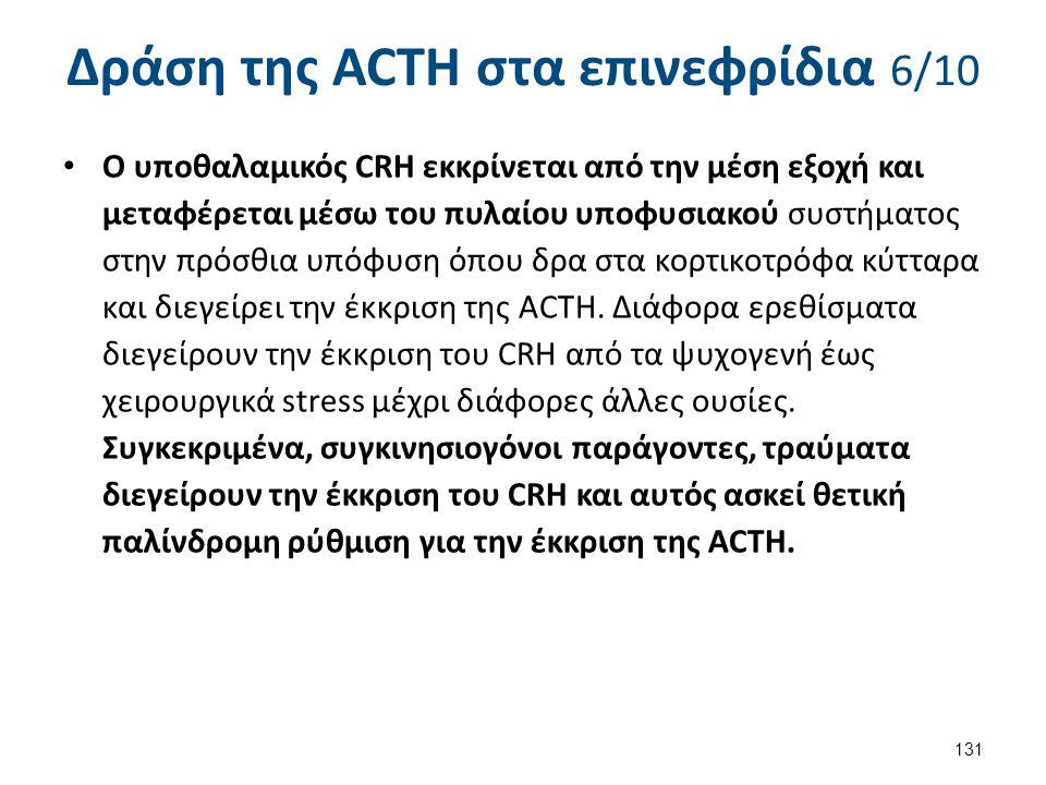 Δράση της ACTH στα επινεφρίδια 6/10 Ο υποθαλαμικός CRH εκκρίνεται από την μέση εξοχή και μεταφέρεται μέσω του πυλαίου υποφυσιακού συστήματος στην πρόσ