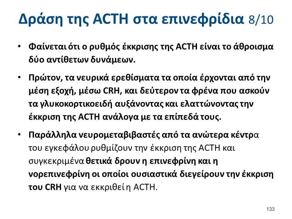 Δράση της ACTH στα επινεφρίδια 8/10 Φαίνεται ότι ο ρυθμός έκκρισης της ACTH είναι το άθροισμα δύο αντίθετων δυνάμεων. Πρώτον, τα νευρικά ερεθίσματα τα