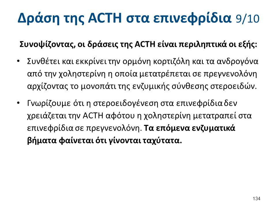 Δράση της ACTH στα επινεφρίδια 9/10 Συνοψίζοντας, οι δράσεις της ACTH είναι περιληπτικά οι εξής: Συνθέτει και εκκρίνει την ορμόνη κορτιζόλη και τα ανδ