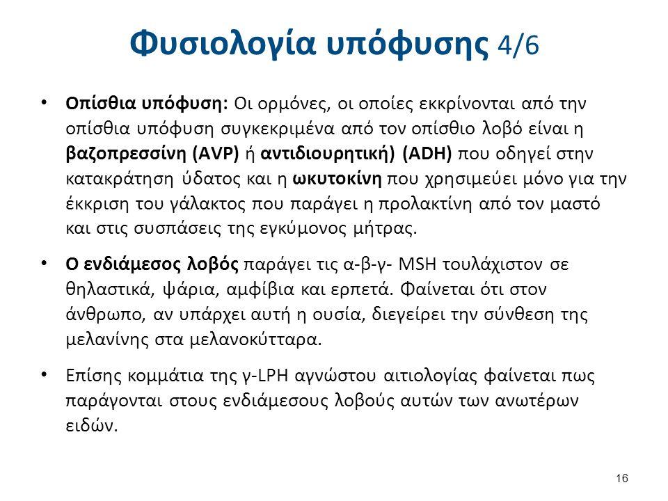 Φυσιολογία υπόφυσης 4/6 Οπίσθια υπόφυση: Οι ορμόνες, οι οποίες εκκρίνονται από την οπίσθια υπόφυση συγκεκριμένα από τον οπίσθιο λοβό είναι η βαζοπρεσσ