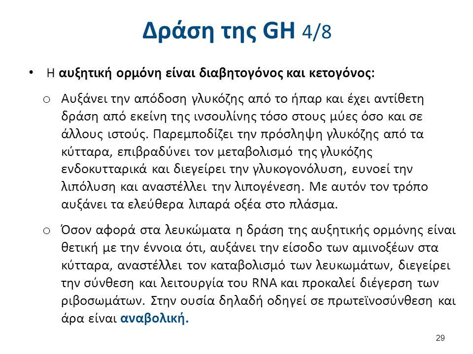 Δράση της GH 4/8 Η αυξητική ορμόνη είναι διαβητογόνος και κετογόνος: o Αυξάνει την απόδοση γλυκόζης από το ήπαρ και έχει αντίθετη δράση από εκείνη της