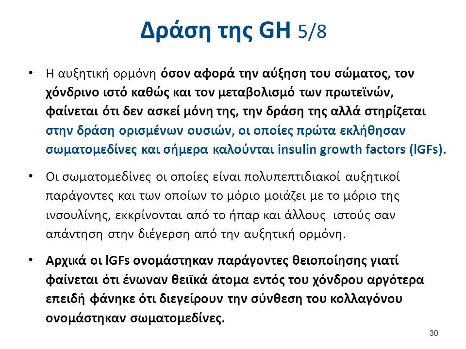 Δράση της GH 5/8 Η αυξητική ορμόνη όσον αφορά την αύξηση του σώματος, τον χόνδρινο ιστό καθώς και τον μεταβολισμό των πρωτεϊνών, φαίνεται ότι δεν ασκε