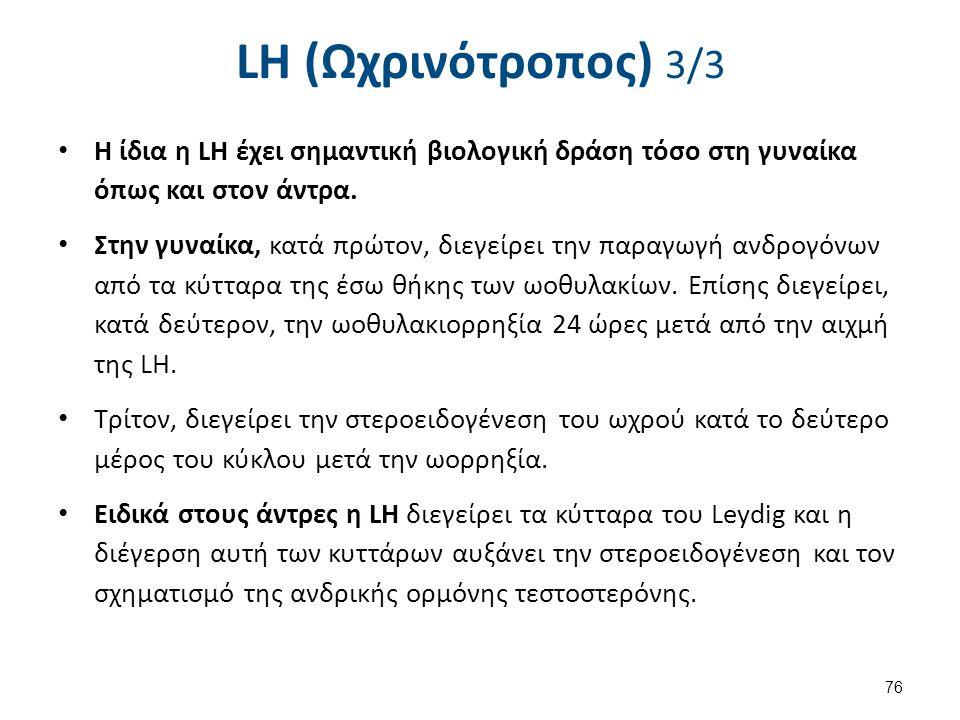 LH (Ωχρινότροπος) 3/3 Η ίδια η LΗ έχει σημαντική βιολογική δράση τόσο στη γυναίκα όπως και στον άντρα. Στην γυναίκα, κατά πρώτον, διεγείρει την παραγω