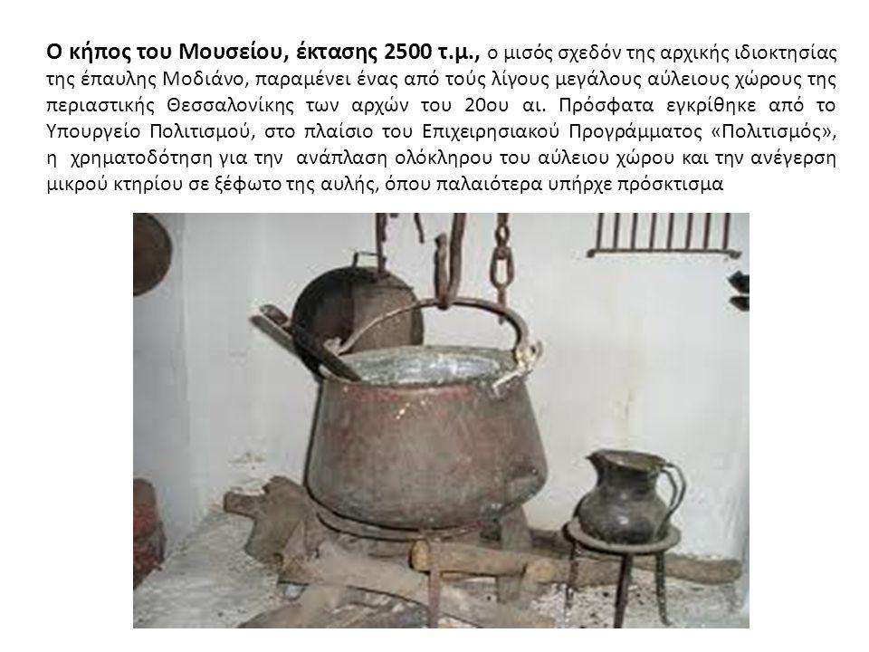 Ο κήπος του Μουσείου, έκτασης 2500 τ.μ., ο μισός σχεδόν της αρχικής ιδιοκτησίας της έπαυλης Μοδιάνο, παραμένει ένας από τούς λίγους μεγάλους αύλειους χώρους της περιαστικής Θεσσαλονίκης των αρχών του 20ου αι.