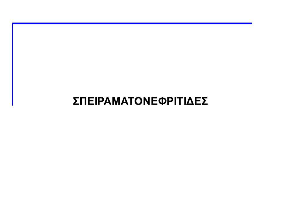 ΣΠΕΙΡΑΜΑΤΟΝΕΦΡΙΤΙΔΕΣ
