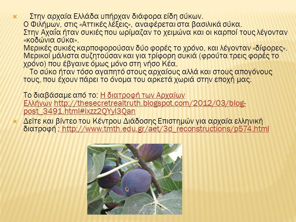  Στην αρχαία Ελλάδα υπήρχαν διάφορα είδη σύκων.