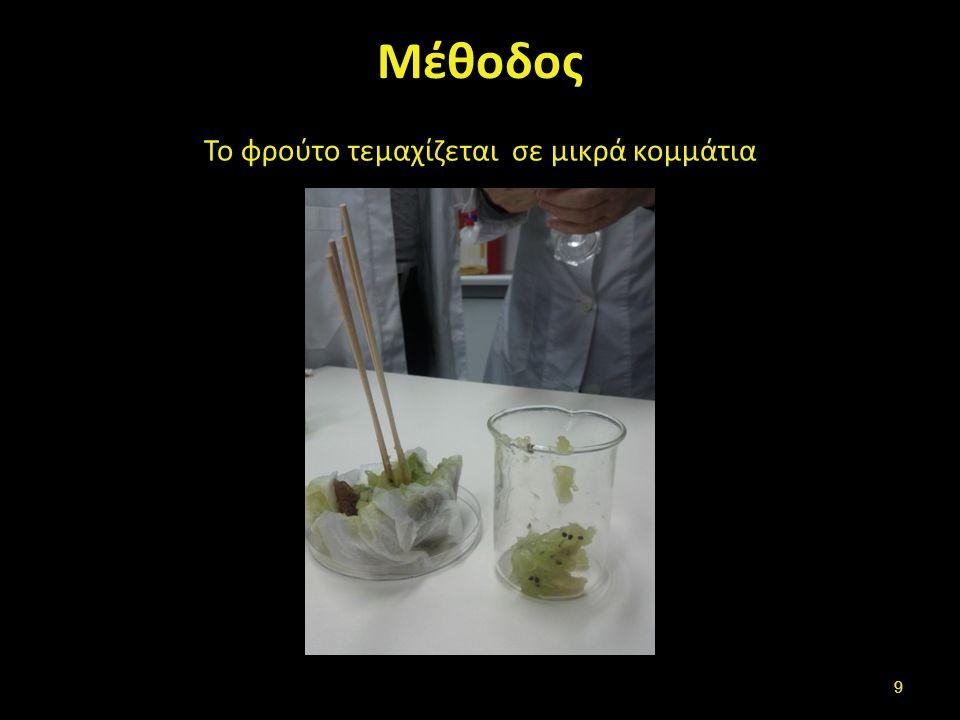 Μέθοδος Το φρούτο τεμαχίζεται σε μικρά κομμάτια 9