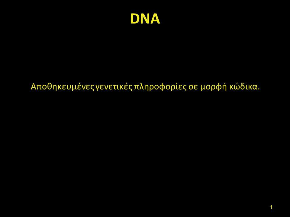 DNA Αποθηκευμένες γενετικές πληροφορίες σε μορφή κώδικα. 1