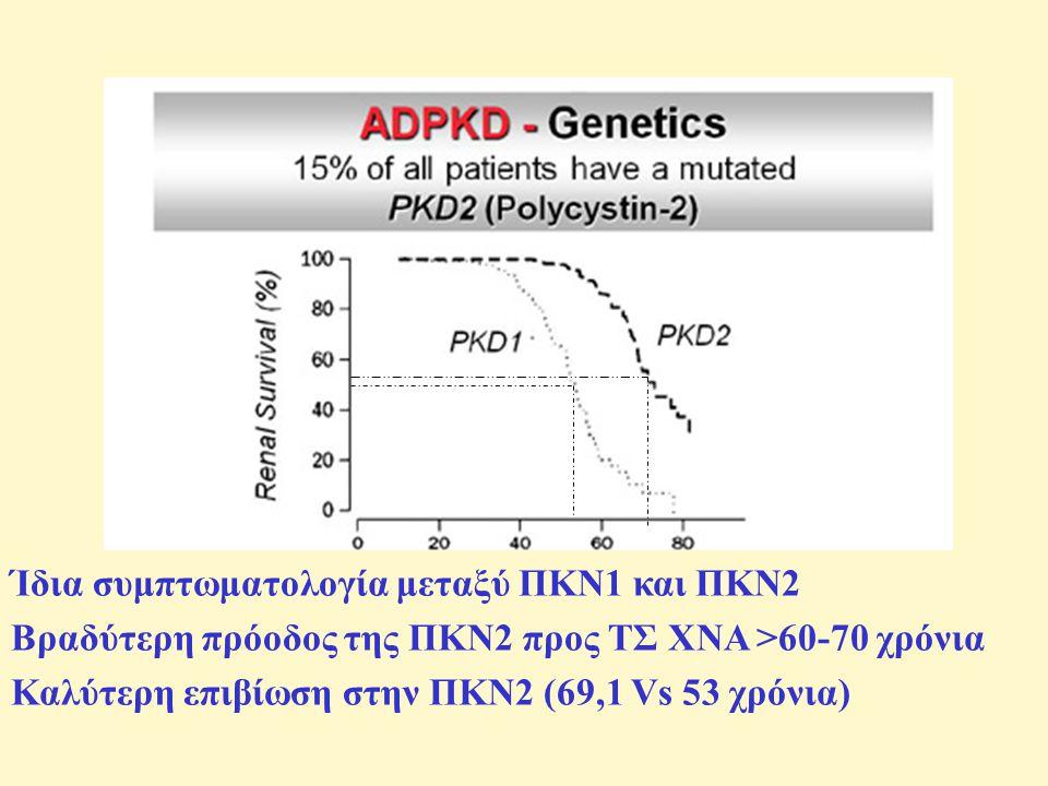 Ίδια συμπτωματολογία μεταξύ ΠΚΝ1 και ΠΚΝ2 Βραδύτερη πρόοδος της ΠΚΝ2 προς ΤΣ ΧΝΑ >60-70 χρόνια Καλύτερη επιβίωση στην ΠΚΝ2 (69,1 Vs 53 χρόνια)