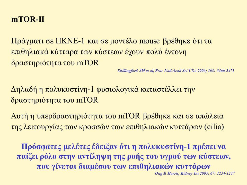 mTOR-II Πράγματι σε ΠΚΝΕ-1 και σε μοντέλο mouse βρέθηκε ότι τα επιθηλιακά κύτταρα των κύστεων έχουν πολύ έντονη δραστηριότητα του mTOR Shillingford JM et al, Proc Natl Acad Sci USA 2006; 103: 5466-5471 Δηλαδή η πολυκυστίνη-1 φυσιολογικά καταστέλλει την δραστηριότητα του mTOR Αυτή η υπερδραστηριότητα του mTOR βρέθηκε και σε απώλεια της λειτουργίας των κροσσών των επιθηλιακών κυττάρων (cilia) Πρόσφατες μελέτες έδειξαν ότι η πολυκυστίνη-1 πρέπει να παίζει ρόλο στην αντίληψη της ροής του υγρού των κύστεων, που γίνεται διαμέσου των επιθηλιακών κυττάρων Ong & Harris, Kidney Int 2005; 67: 1234-1247
