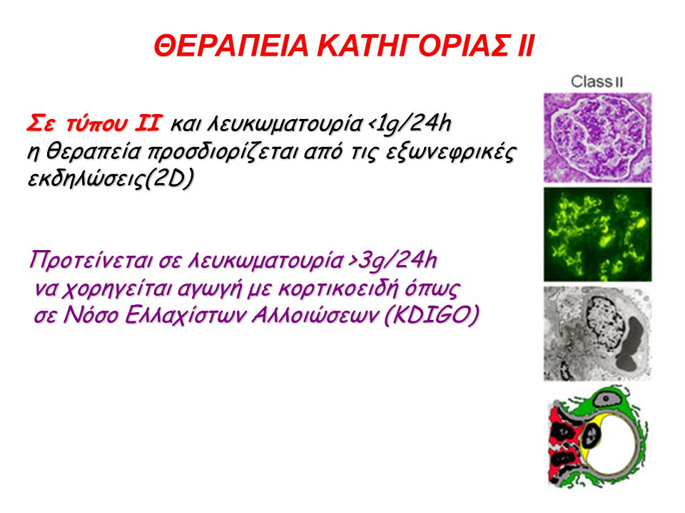 ΡΧΙΚΗ ΘΕΡΑΠΕΙΑ ΤΥΠΟΥ ΙΙΙ,IV AΡΧΙΚΗ ΘΕΡΑΠΕΙΑ ΤΥΠΟΥ ΙΙΙ,IV Σε τύπου ΙΙΙΑ ή ΙΙΙΑ/C συνιστάται αρχική θεραπεία με MMF με συνιστόμενη μέγιστη δόση τα 3g/24h ή IV κυκλοφωσφαμίδη (6 των 500mg ανά 15ήμερον) πάντα σε συνδυασμό με κορτικοειδή λόγω της καλύτερης σχέσης δραστικότητας/τοξικότητας (EULAR/ERA-EDTA) Αρχική θεραπεία: MMF ή IV κυκλοφωσφαμίδη (KDIGO) Σε παρουσία κακών προγνωστικών δεικτών, όπως Οξεία Νεφρική Ανεπάρκεια, μεγάλοι μηνοειδείς σχηματισμοί, ινιδοειδή νέκρωση εκτός από τα παραπάνω σχήματα μπορεί να χορηγηθούν I.V.