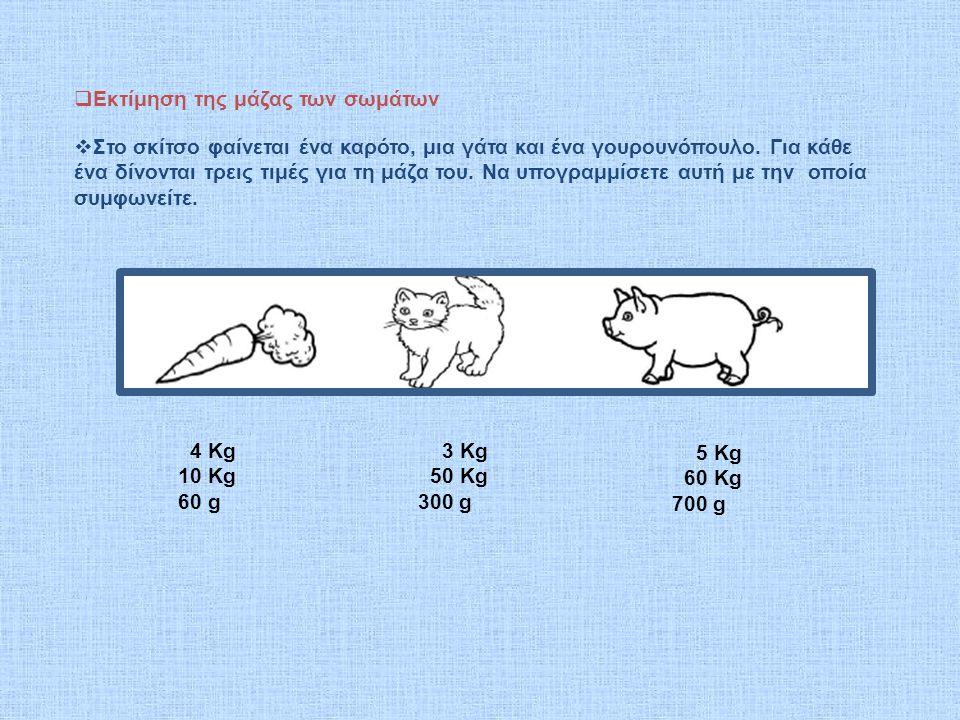  Εκτίμηση της μάζας των σωμάτων  Στο σκίτσο φαίνεται ένα καρότο, μια γάτα και ένα γουρουνόπουλο.