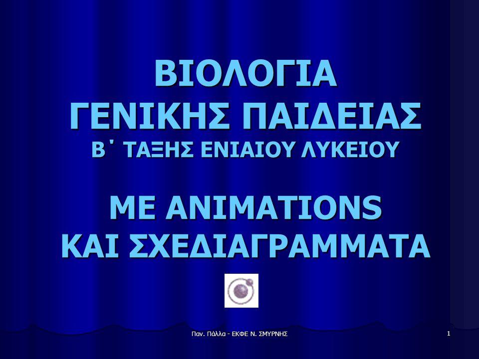 Παν. Πάλλα - ΕΚΦΕ Ν. ΣΜΥΡΝΗΣ 12 Μεταγραφή και μετάφραση του DNA