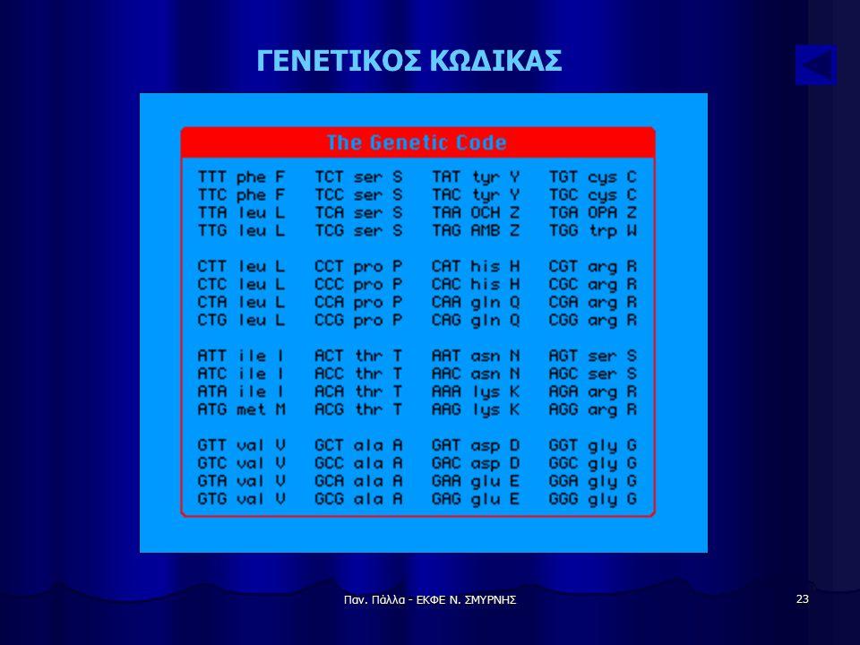 Παν. Πάλλα - ΕΚΦΕ Ν. ΣΜΥΡΝΗΣ 23 ΓΕΝΕΤΙΚΟΣ ΚΩΔΙΚΑΣ