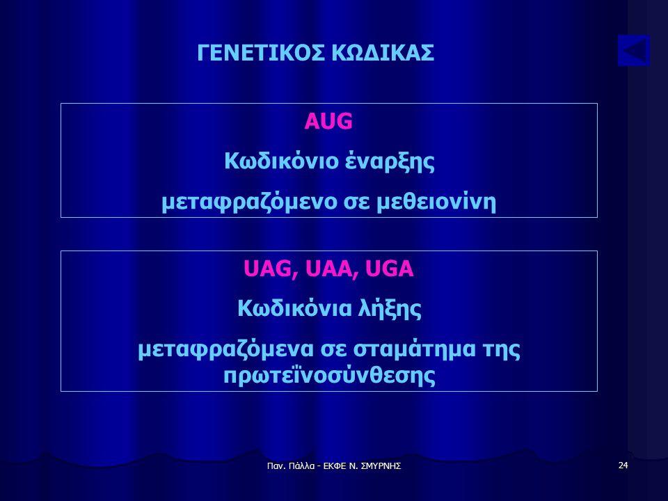 Παν. Πάλλα - ΕΚΦΕ Ν. ΣΜΥΡΝΗΣ 24 ΓΕΝΕΤΙΚΟΣ ΚΩΔΙΚΑΣ AUG Κωδικόνιο έναρξης μεταφραζόμενο σε μεθειονίνη UAG, UAA, UGA Κωδικόνια λήξης μεταφραζόμενα σε στα