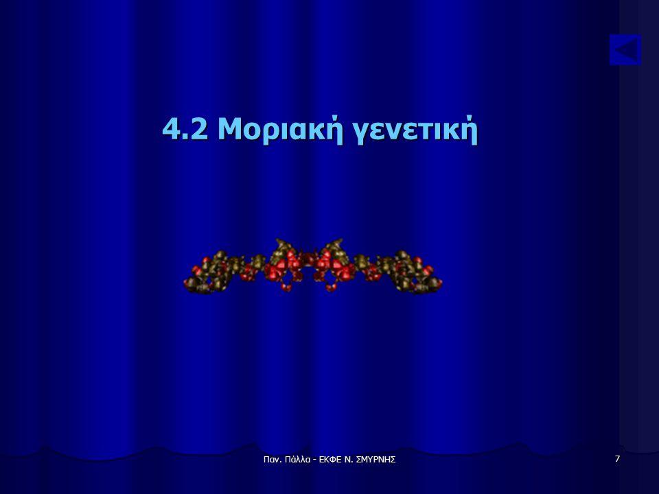 Παν. Πάλλα - ΕΚΦΕ Ν. ΣΜΥΡΝΗΣ 7 4.2 Μοριακή γενετική