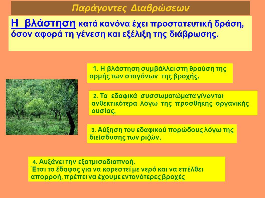 Παράγοντες Διαβρώσεων Η βλάστηση κατά κανόνα έχει προστατευτική δράση, όσον αφορά τη γένεση και εξέλιξη της διάβρωσης. 1. Η βλάστηση συμβάλλει στη θρα
