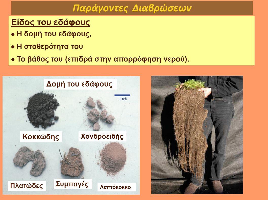 Παράγοντες Διαβρώσεων Είδος του εδάφους Η δομή του εδάφους, Η σταθερότητα του Το βάθος του (επιδρά στην απορρόφηση νερού). Δομή του εδάφους Κοκκώδης Χ