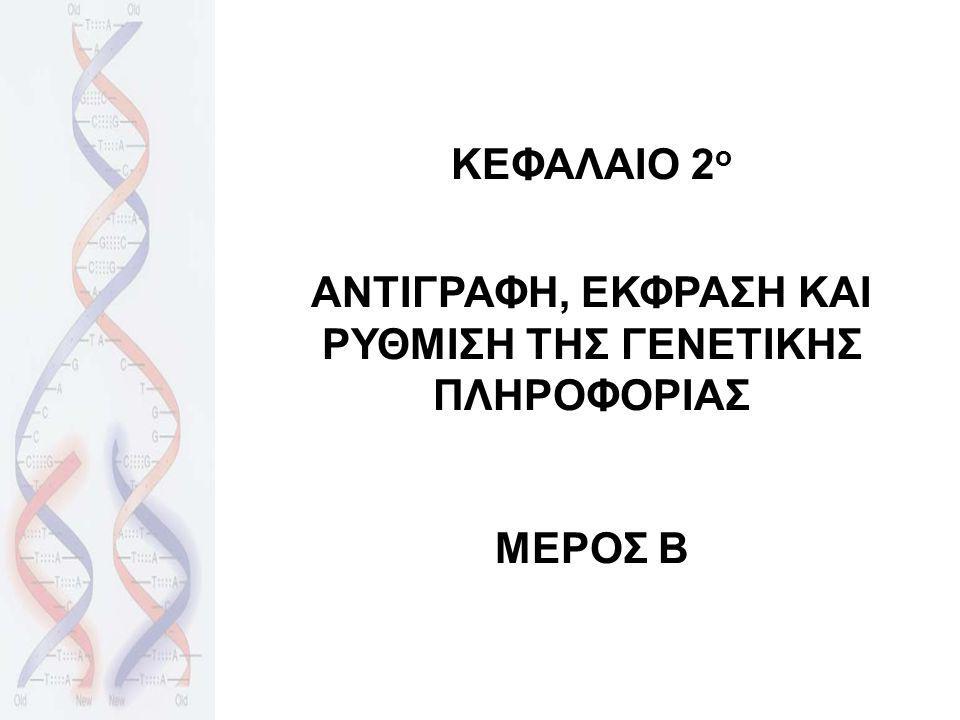 ΚΕΦΑΛΑΙΟ 2 ο ΑΝΤΙΓΡΑΦΗ, ΕΚΦΡΑΣΗ ΚΑΙ ΡΥΘΜΙΣΗ ΤΗΣ ΓΕΝΕΤΙΚΗΣ ΠΛΗΡΟΦΟΡΙΑΣ ΜΕΡΟΣ Β