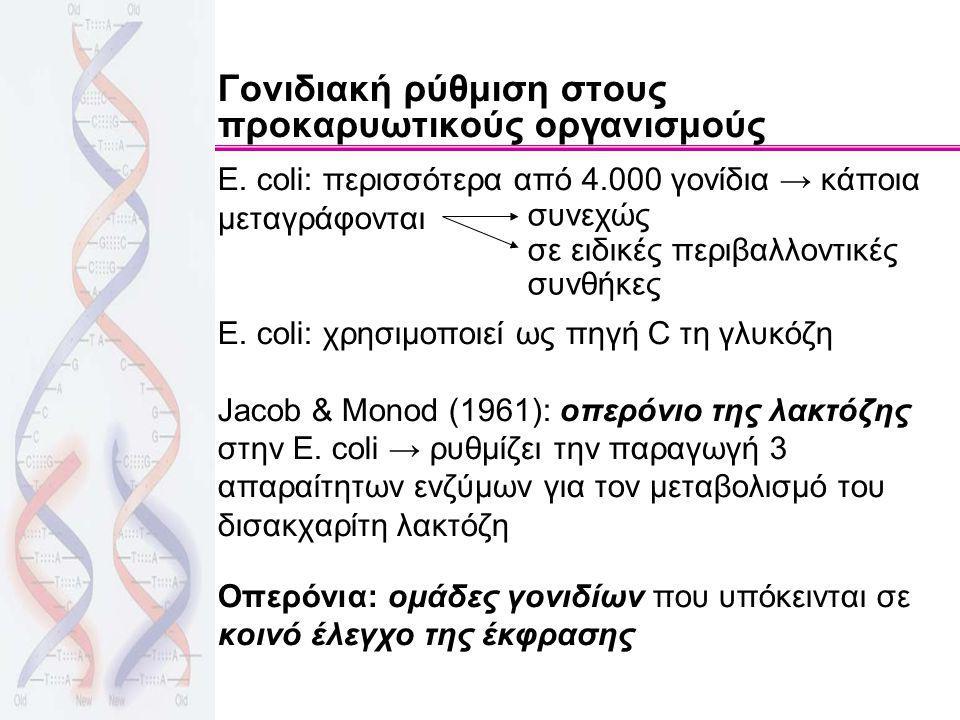 Γονιδιακή ρύθμιση στους προκαρυωτικούς οργανισμούς E. coli: περισσότερα από 4.000 γονίδια → κάποια μεταγράφονται E. coli: χρησιμοποιεί ως πηγή C τη γλ