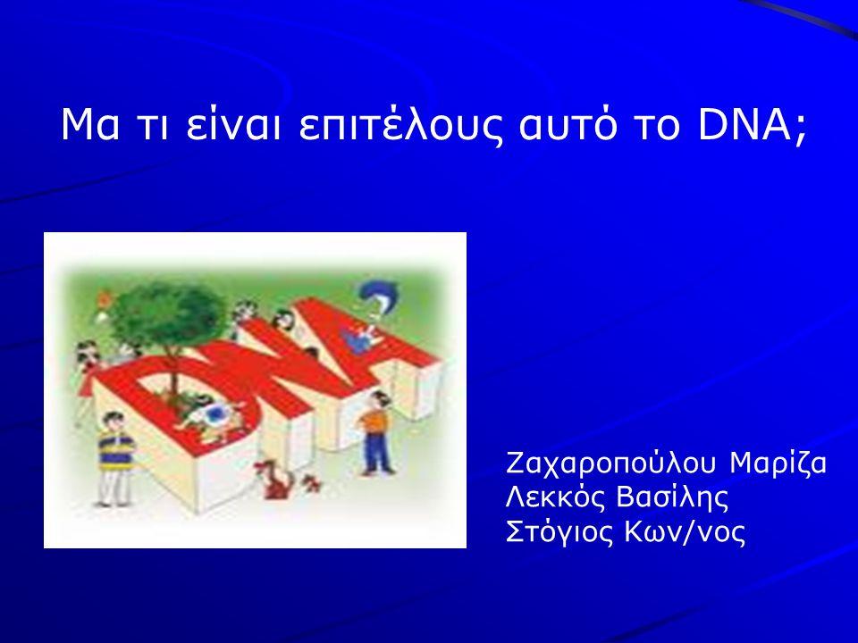 Ζαχαροπούλου Μαρίζα Λεκκός Βασίλης Στόγιος Κων/νος Μα τι είναι επιτέλους αυτό το DNA;