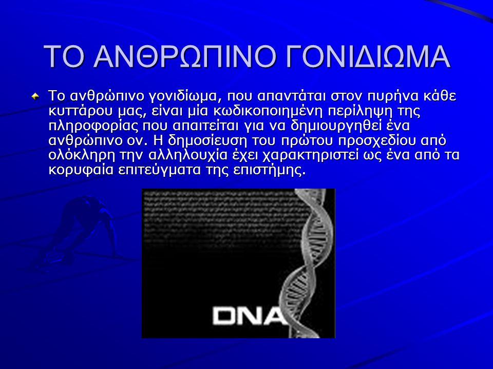 ΤΟ ΑΝΘΡΩΠΙΝΟ ΓΟΝΙΔΙΩΜΑ Το ανθρώπινο γονιδίωμα, που απαντάται στον πυρήνα κάθε κυττάρου μας, είναι μία κωδικοποιημένη περίληψη της πληροφορίας που απαιτείται για να δημιουργηθεί ένα ανθρώπινο ον.