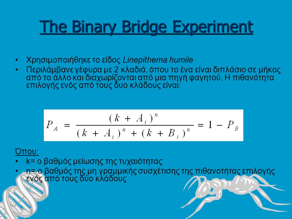 The Binary Bridge Experiment Χρησιμοποιήθηκε το είδος Linepithema humile Περιλάμβανε γέφυρα με 2 κλαδιά, όπου το ένα είναι διπλάσιο σε μήκος από το άλλο και διαχωρίζονται από μια πηγή φαγητού.