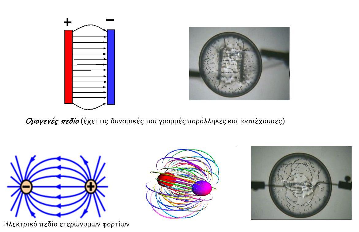 Ομογενές πεδίο (έχει τις δυναμικές του γραμμές παράλληλες και ισαπέχουσες) Ηλεκτρικό πεδίο ετερώνυμων φορτίων
