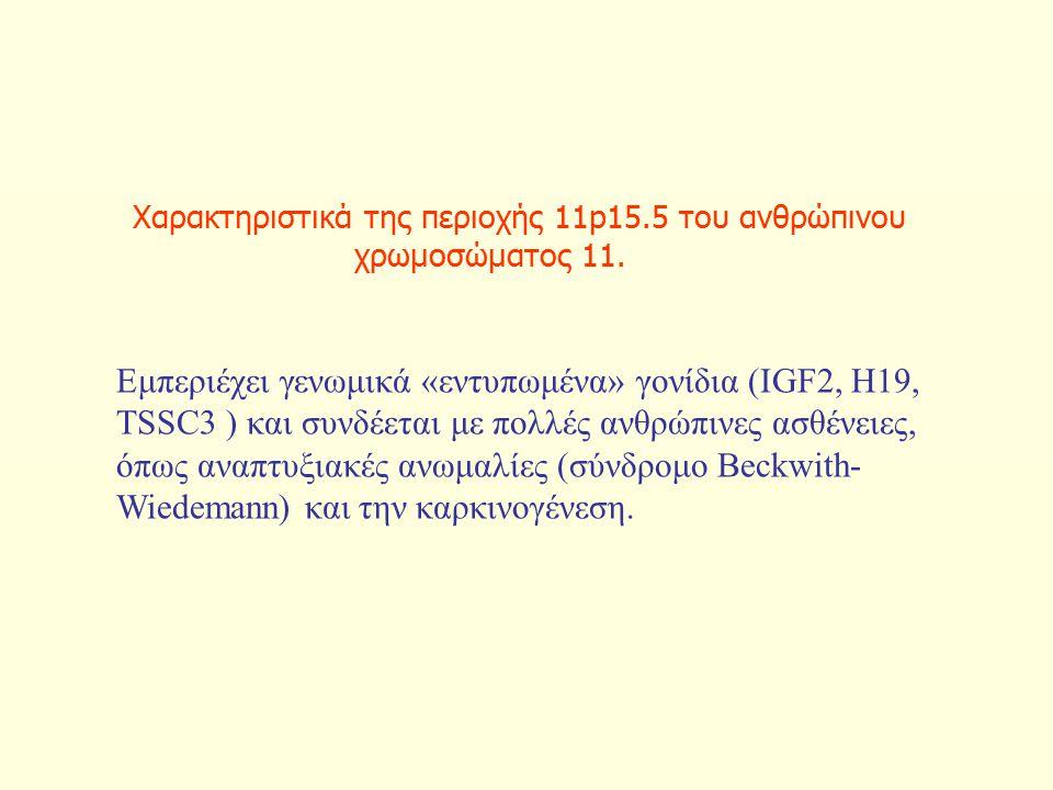 Χαρακτηριστικά της περιοχής 11p15.5 του ανθρώπινου χρωμοσώματος 11.