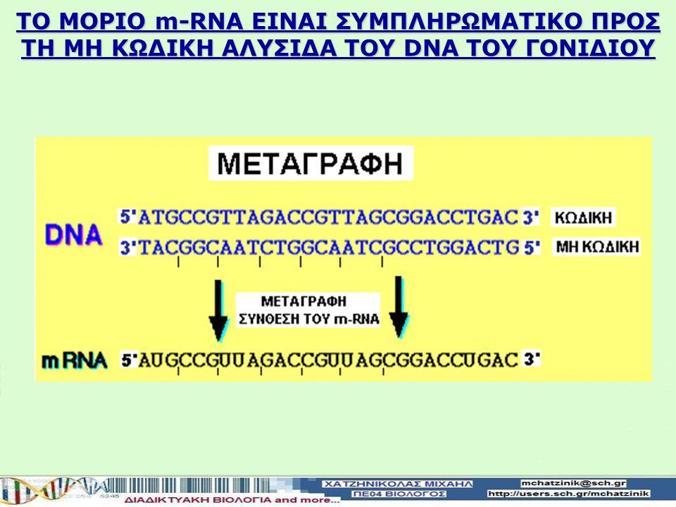 Το μόριο του RNA που συντίθεται είναι συμπληρωματικό προς τη μία αλυσίδα της διπλής έλικας του DNA του γονιδίου μεταγραφόμενη αλυσίδα της διπλής έλικας του DNA του γονιδίουονομάζεται μη κωδικήκαι είναι συμπληρωματική του παραγόμενου RNA Η μεταγραφόμενη αλυσίδα της διπλής έλικας του DNA του γονιδίου ονομάζεται μη κωδική και είναι συμπληρωματική του παραγόμενου RNA αλυσίδα της διπλής έλικας του DNA του γονιδίουπου δεν μεταγράφεται ονομάζεται κωδική Η συμπληρωματική αλυσίδα της διπλής έλικας του DNA του γονιδίου που δεν μεταγράφεται ονομάζεται κωδική RNA είναι το κινητό αντίγραφο της πληροφορίας του γονιδίου Το RNA είναι το κινητό αντίγραφο της πληροφορίας του γονιδίου ΓΕΝΙΚΟΣ ΜΗΧΑΝΙΣΜΟΣ ΤΗΣ ΜΕΤΑΓΡΑΦΗΣ