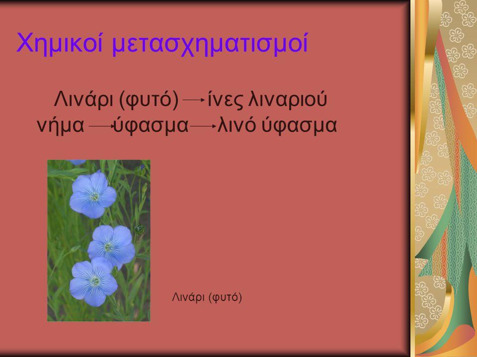 Χημικοί μετασχηματισμοί Λινάρι (φυτό) ίνες λιναριού νήμα ύφασμα λινό ύφασμα Λινάρι (φυτό)