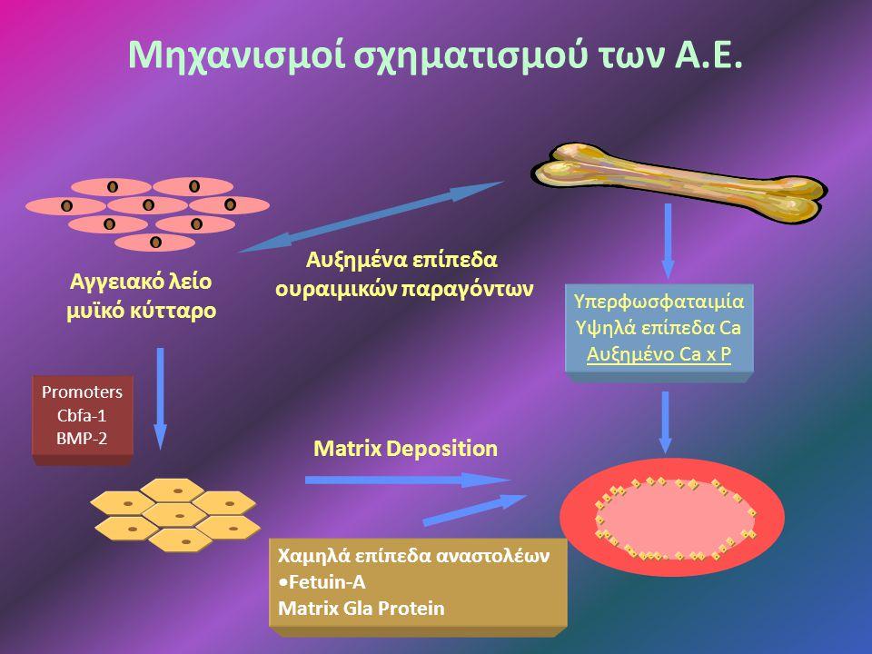 Μηχανισμοί σχηματισμού των Α.Ε.