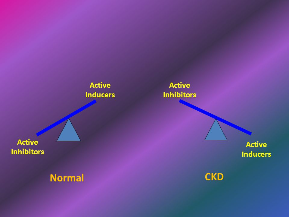 Active Inhibitors CKD Active Inhibitors Active Inducers Normal Active Inducers