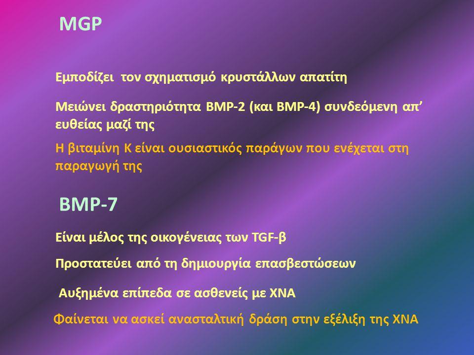 MGP Εμποδίζει τον σχηματισμό κρυστάλλων απατίτη Μειώνει δραστηριότητα ΒΜΡ-2 (και ΒΜΡ-4) συνδεόμενη απ' ευθείας μαζί της Η βιταμίνη Κ είναι ουσιαστικός παράγων που ενέχεται στη παραγωγή της ΒΜΡ-7 Προστατεύει από τη δημιουργία επασβεστώσεων Αυξημένα επίπεδα σε ασθενείς με ΧΝΑ Φαίνεται να ασκεί ανασταλτική δράση στην εξέλιξη της ΧΝΑ Είναι μέλος της οικογένειας των TGF-β