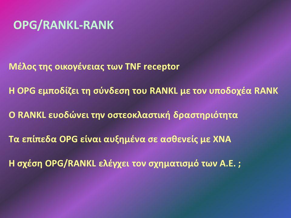 OPG/RANKL-RANK Μέλος της οικογένειας των TNF receptor Η OPG εμποδίζει τη σύνδεση του RANKL με τον υποδοχέα RANK Ο RANKL ευοδώνει την οστεοκλαστική δραστηριότητα Τα επίπεδα OPG είναι αυξημένα σε ασθενείς με ΧΝΑ Η σχέση OPG/RANKL ελέγχει τον σχηματισμό των Α.Ε.