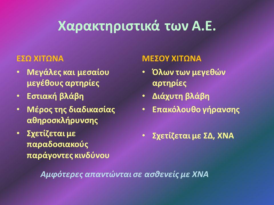 Χαρακτηριστικά των Α.Ε.