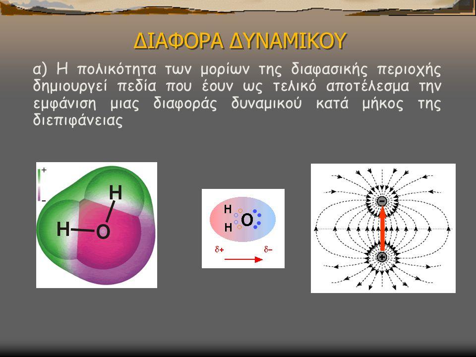 ΔΙΑΦΟΡΑ ΔΥΝΑΜΙΚΟΥ α) Η πολικότητα των μορίων της διαφασικής περιοχής δημιουργεί πεδία που έουν ως τελικό αποτέλεσμα την εμφάνιση μιας διαφοράς δυναμικού κατά μήκος της διεπιφάνειας