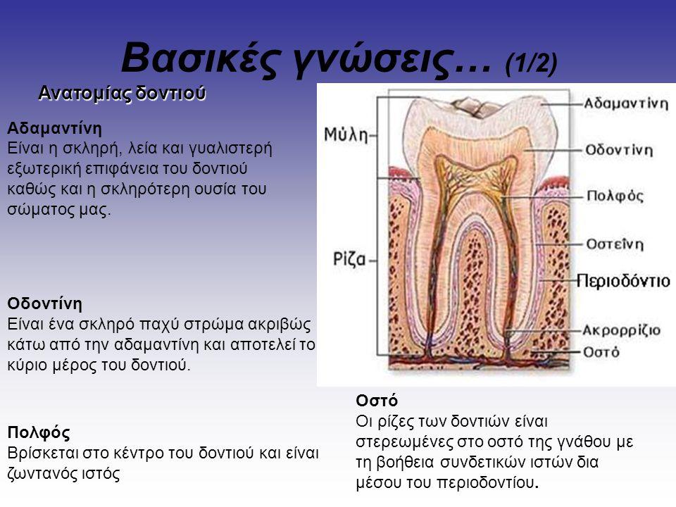 Βασικές γνώσεις… (1/2) Ανατομίας δοντιού Αδαμαντίνη Είναι η σκληρή, λεία και γυαλιστερή εξωτερική επιφάνεια του δοντιού καθώς και η σκληρότερη ουσία τ