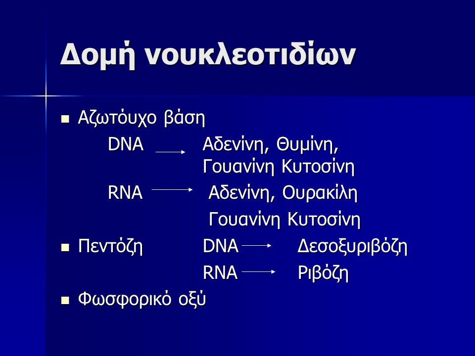 Μόλυνση των βακτηρίων από τους ιχνηθετημένους ιούς P 32 S 35 Βακτήρια