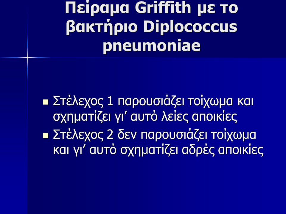 Πείραμα Griffith με το βακτήριο Diplococcus pneumoniae Στέλεχος 1 παρουσιάζει τοίχωμα και σχηματίζει γι' αυτό λείες αποικίες Στέλεχος 1 παρουσιάζει τοίχωμα και σχηματίζει γι' αυτό λείες αποικίες Στέλεχος 2 δεν παρουσιάζει τοίχωμα και γι' αυτό σχηματίζει αδρές αποικίες Στέλεχος 2 δεν παρουσιάζει τοίχωμα και γι' αυτό σχηματίζει αδρές αποικίες
